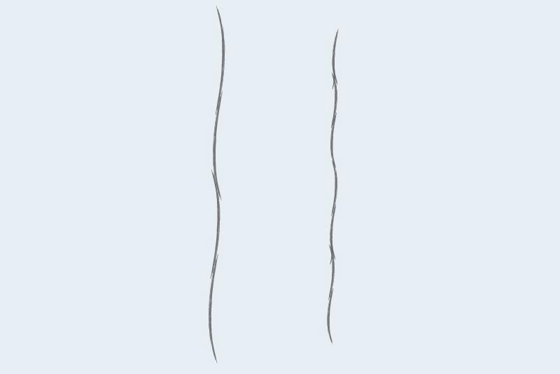 Extra-Long Staple Fiber vs Short Staple