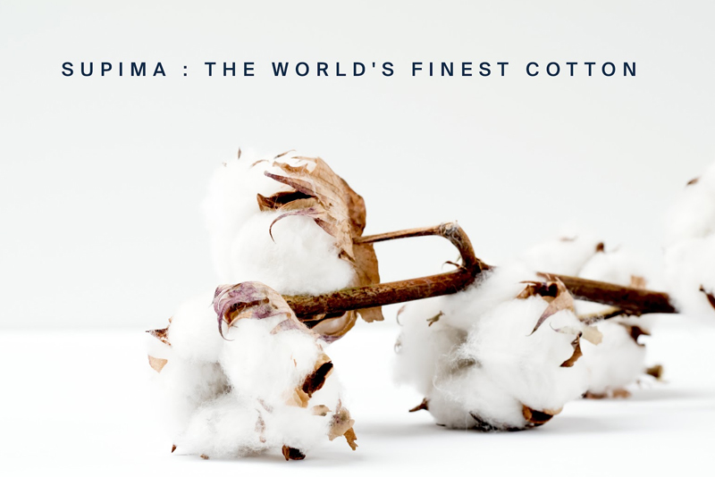 Supima Cotton Origins